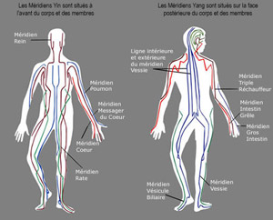 Organes et m ridiens - Sensation de froid interieur du corps ...